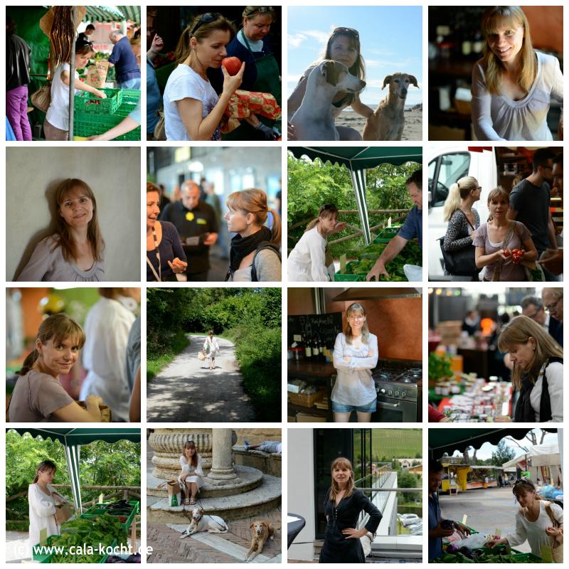 150117_Collage Carmen